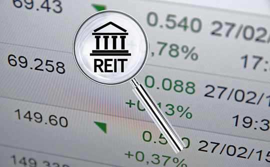 REIT Property Valuation